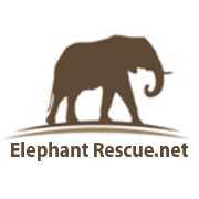elephant-rescue-net-social-media-logo