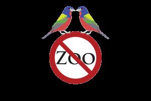 zftb-logo